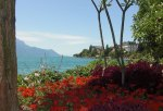 A nice view of the beautiful Lake Geneva where the Montreux city is located.